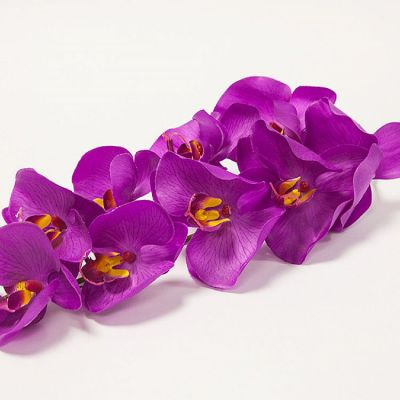 Orchid Flower - Purple