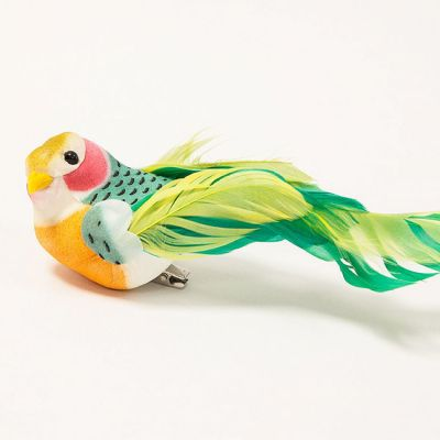Tropical Birds 12 Pack - Lime/Green