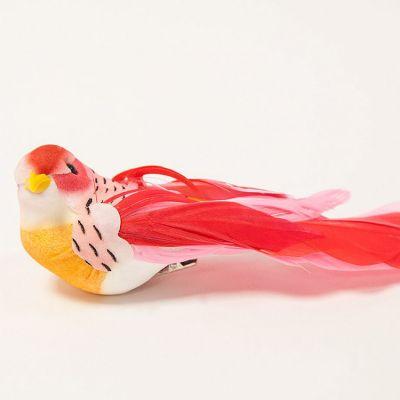 Tropical Birds 12 Pack - Pink/Red