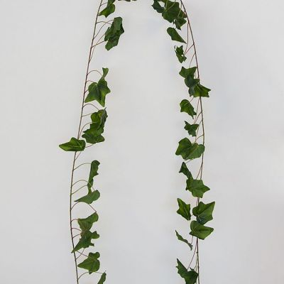 English Ivy Leaf Garland