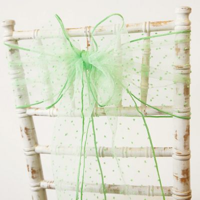 Kimmy Dot Organza Sash - Mint