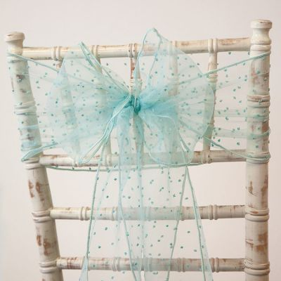 Kimmy Dot Organza Sash - Tiffany Blue