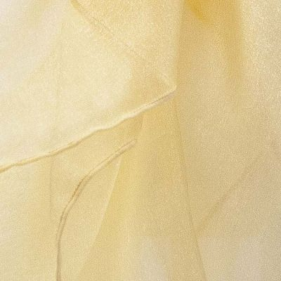Organza Fabric - Gold