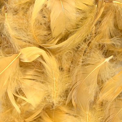 Feather Bag 50G Gold