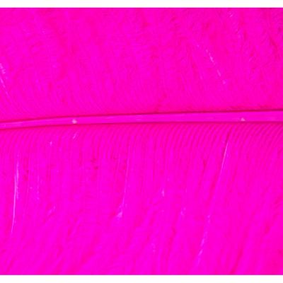Ostrich Feathers - Hot Pink