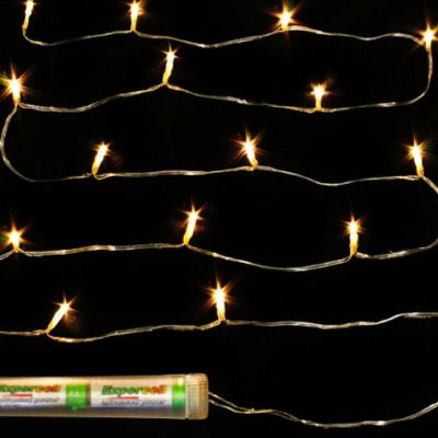 Submersible 10 LED Fairy Lights  - Warm White