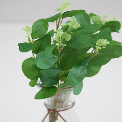 EUCALYPTUS BUNCH GREEN