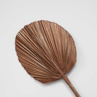 Dried Round Palm Leaves Bronze 3 Pack