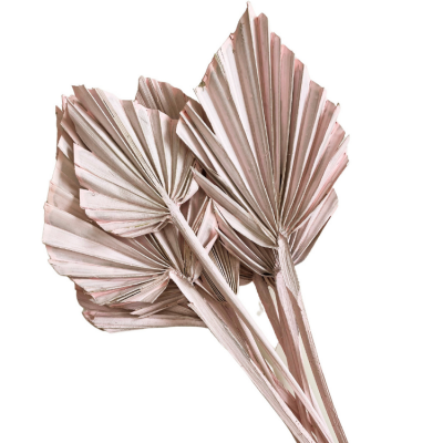 DRIED MINI PALM SPEARS 10 PACK PINK