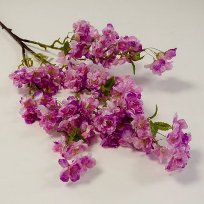 Cherry Blossom HM82207 - Purple