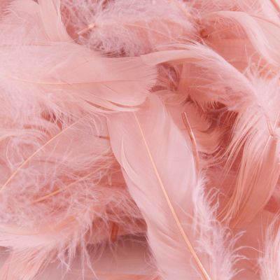 FEATHER BAG 50G ROSE GOLD