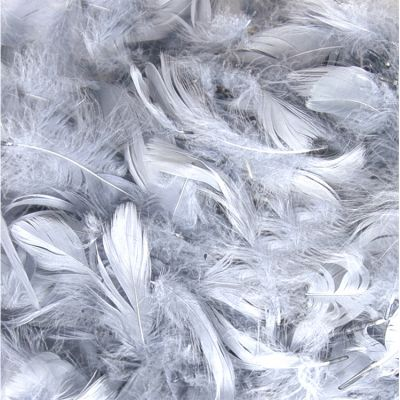 Feather Bag 50g Silver