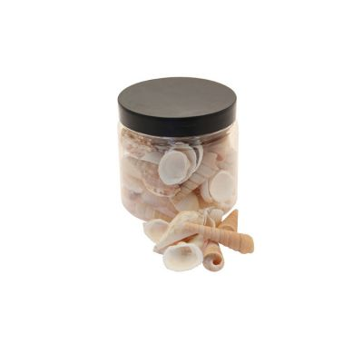 NATURAL SEA SHELLS IN JAR 250G