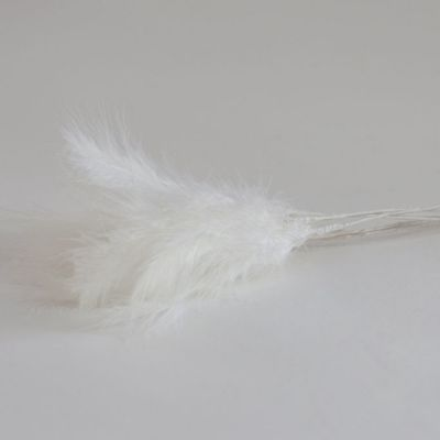 Fluff Feathers - White