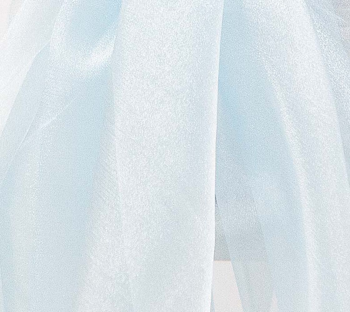 Organza Fabric - Light Blue