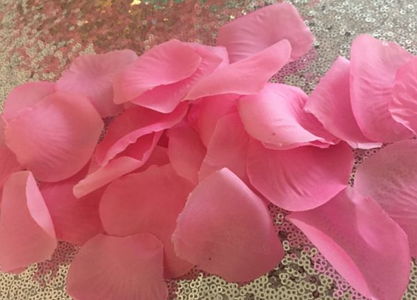 Large Silk Rose Petals 500 Pack - Pink