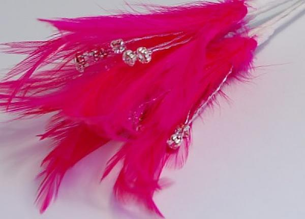 Diamante Feathers - Hot Pink
