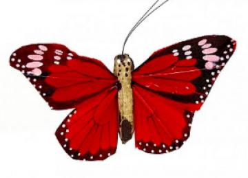 02 Hand Painted Butterflies - Red