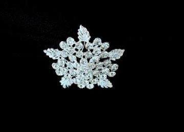 Diamante Star Leaf Buckles - 6 Pack