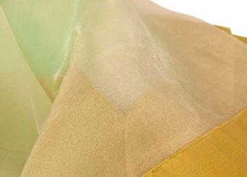 Organza Overlay with Taffeta Border - Sage/Mint