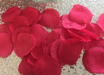 Large Silk Rose Petals 500 Pack - Rose Red