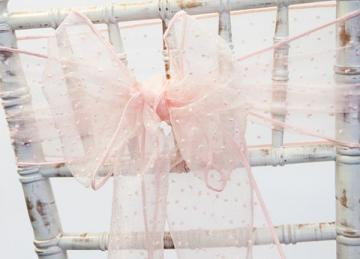 Kimmy Dot Organza Sash - Blush Pink