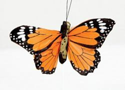 02 Hand Painted Butterflies - Orange