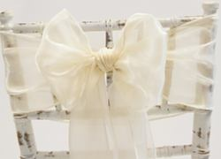 Silk Organza Sash - Light Champagne
